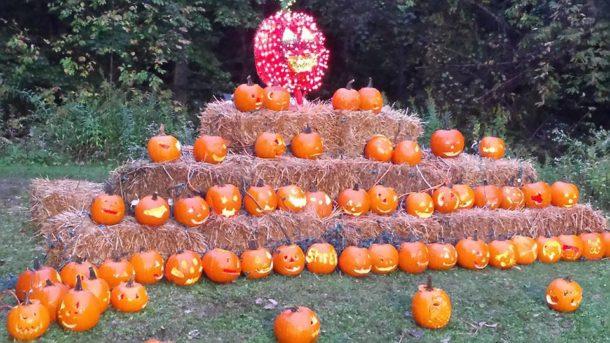 Erie, Pa Master Gardeners Halloween 2020 Erie FCU sponsors Pumpkin Walk at Waldameer!   ErieFCU.org