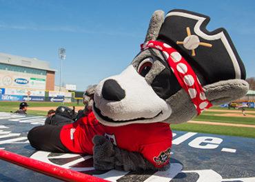 Erie Seawolves Mascot C-Wolf