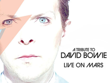 19 David Bowie Live On Mars