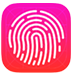 Apple Touch ID Icon